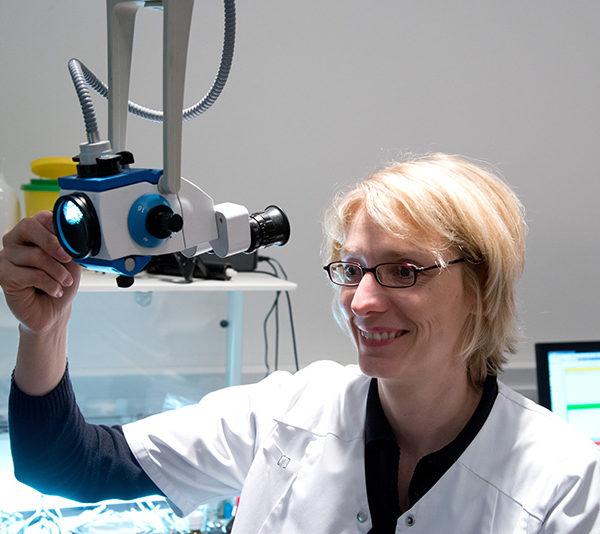 Dr. Bettina Lüer-Groel
